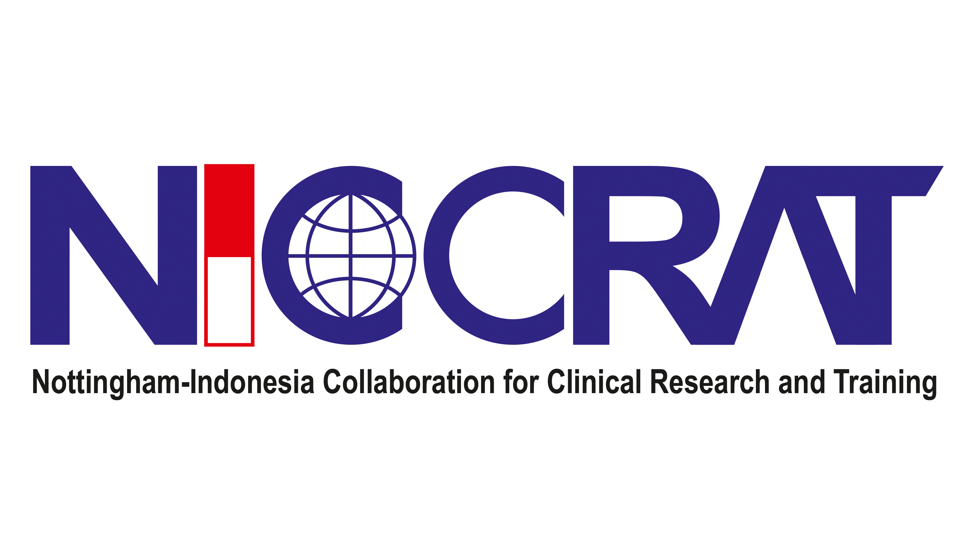 NICCRAT-Delivering Impact Partnerships